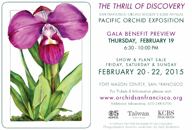 OrchidsAd(640x434)